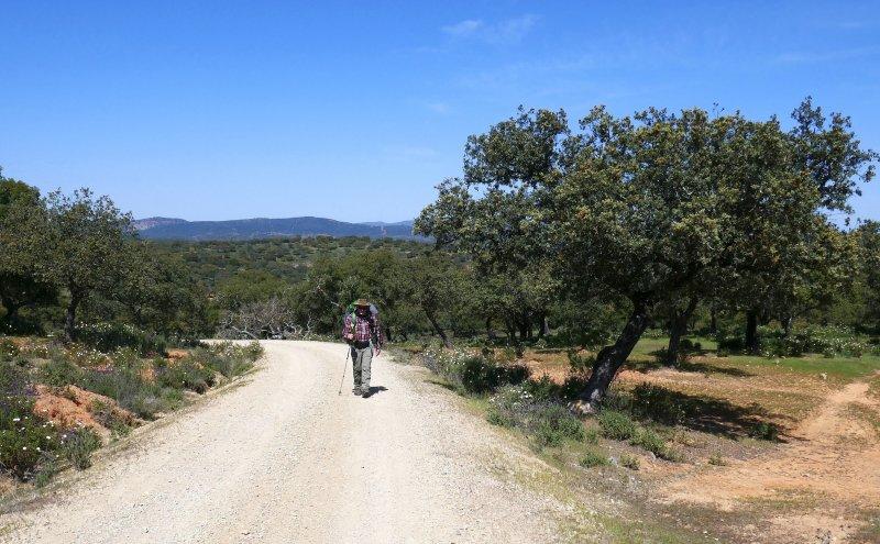 Los caminos - Wege, die berühren. 1.000 km zu Fuß auf der Via des la Plata von Sevilla bis Santiago de Compostela