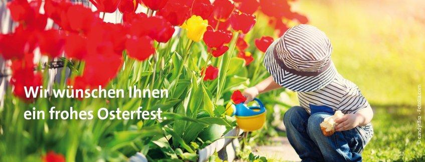 Das Pius-Hospital wünscht Ihnen allen ein frohes Osterfest im Kreise Ihrer Familien und Freunde.